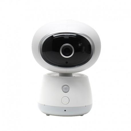 INNOTRONIK IPCAM WIFI PT10 - wifi camera - 2Mpx